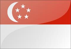 新加坡旅游签证